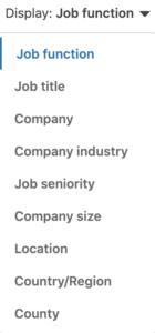 LinkedIn Website Demographic Options